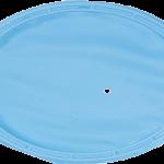 ZIRC INSTI-DAM LATEX-FREE #50Z459 20/Pkg  (Blue)